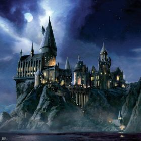 45db6136e49537171ab68d3579299911--hogwarts-minecraft-harry-potter-room